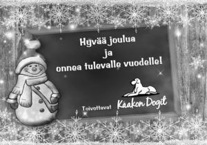 4_17_Kaakon_dogit_joulu.jpg