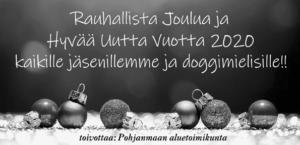 4 19 Pohjanmaa joulu